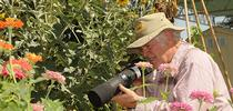 Photographer Allan Jones of Davis focuses his camera on insects in the Häagen-Dazs Honey Bee Haven. (Photo by Kathy Keatley Garvey) for Bug Squad Blog