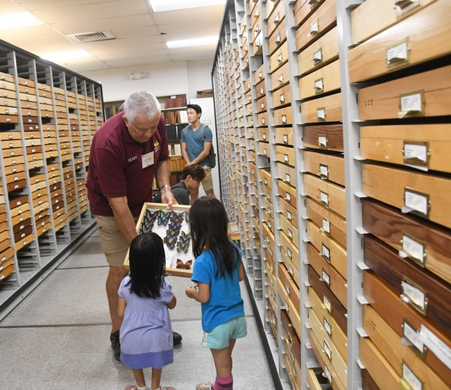 Entomologist Jeff Smith, curator of the butterfly and moth specimens at the Bohart, shows a tray to sisters Lily Edmonds of Davis, 7, and Chloe Edmonds, 6, of Davis. (Photo by Kathy Keatley Garvey)