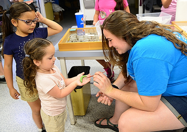Bohart associate and UC Davis graduate Emma Cluff shows tomato hornworms (Manduca quinquemaculata) to Isabella Aranda, 3, and her sister Ximena Aranda, 6. (Photo by Kathy Keatley Garvey)