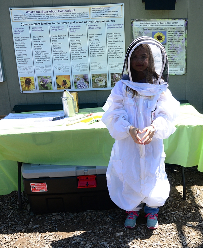 A little beekeeper shapes a heart. Students took turns trying on the beekeeper protective suits. (Photo by Kathy Keatley Garvey)