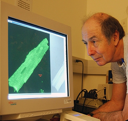 Bruce Hammock examines an image on a computer. (Photo by Kathy Keatley Garvey)