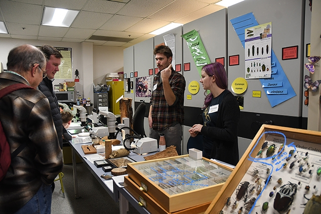 Forest entomologists and doctoral students Gabe Foote (left) and Crystal Homicz (right) talk about their research. (Photo by Kathy Keatley Garvey)