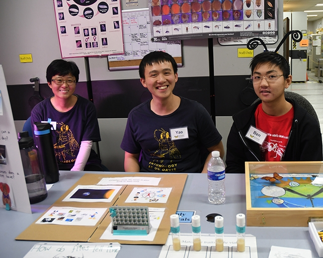 Doctoral student Yao Cai (center) led the discussion on circadian clocks and insects. With him are Nitrol Liu (left), also a graduate student in the Chiu lab, and Ben Kunimoto, a Davis Senior High School student. (Photo by Kathy Keatley Garvey)