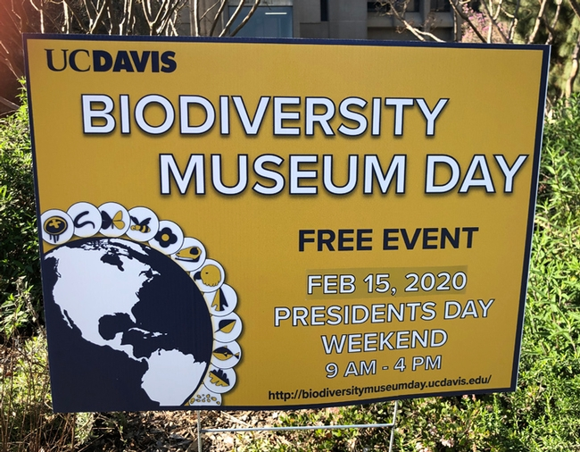 A sign of the times--the ninth annual UC Davis Biodiversity Museum Day is Saturday, Feb. 15. (Photo by Kathy Keatley Garvey)