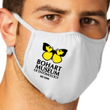 This Bohart Museum face mask will be available soon in the online gift shop.