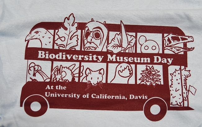 Ivana Li, manager of the UC Davis biology labs, created this art of a bus spotlighting the 13 museums or collections participating in the 2020 UC Davis Biodiversity Museum Day. (Photo by Kathy Keatley Garvey)