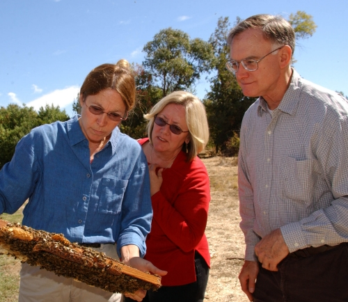 Concerned about bee health are (from left) UC Davis bee breeder-geneticist Susan Cobey; Yuba City beekeeper Valerie Severson of Yuba City; and UC Davis apiculturist Eric Mussen. (Photo by Kathy Keatley Garvey)