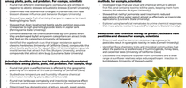 Research highlights in the impact statement include the work of UC Davis Entomology and Nematology faculty members Rick Karban and Rachel Vannette. for Bug Squad Blog