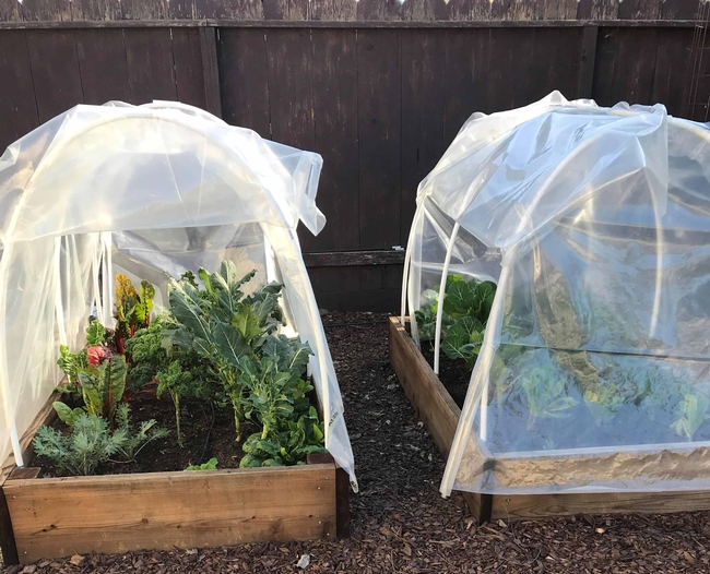 Hoop house by Jenny Marr