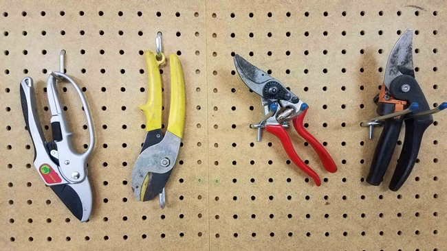 Hand pruners left to right - ratchet, anvil, and 2 types of bypass pruners, J. Alosi
