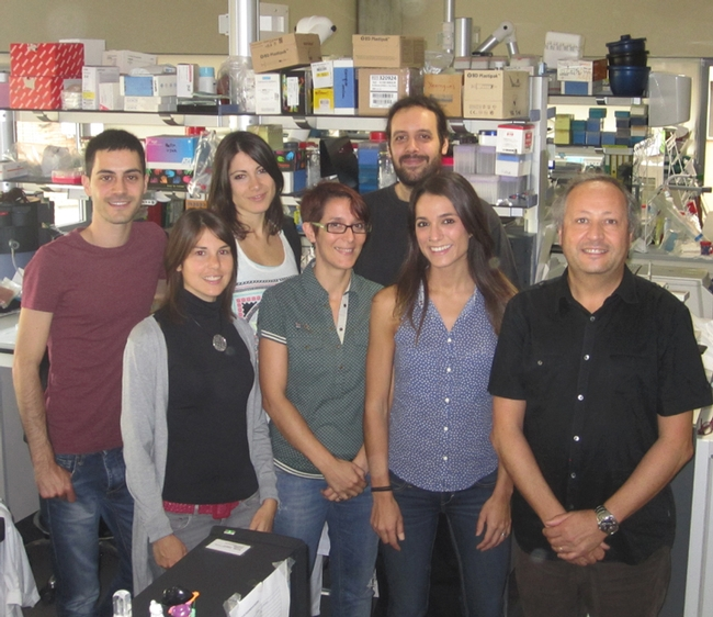 Researchers at the Joan Clària laboratory, University of Barcelona, Spain. In front (from left) are Veronica García-Alonso, Esther Titos, Bibiana Rius and Joan Claria (corresponding author). In back (from left) are Jose Alcaraz-Quilez, Cristina Lopez-Vicario (first author), and Aritz Lopategi.