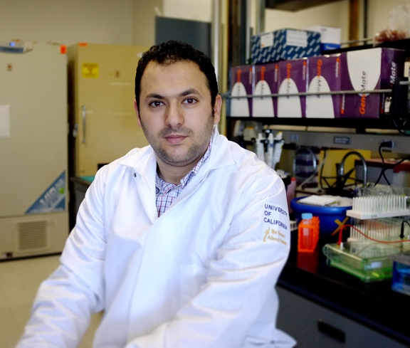 Ahmed Bettaieb of the Fawaz Haj lab.