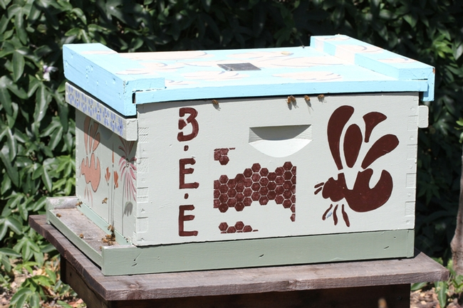 The haven includes a viable bee hive. (Photo by Kathy Keatley Garvey)