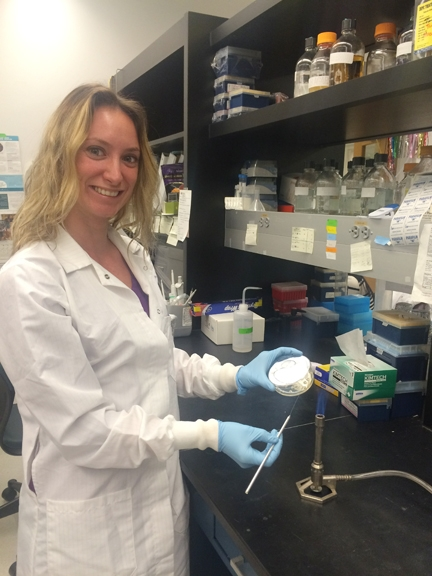 Postdoctoral fellow Jenny Carlson in her John Hopkins University lab. (Photo by Yesseinia Anglero-Rodriguez)