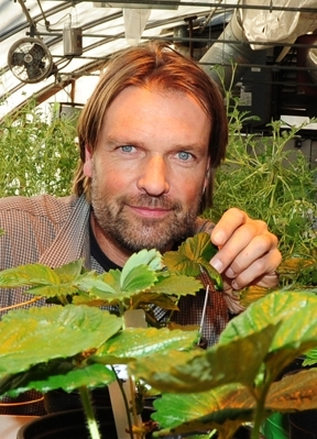 Agricultural entomologist Christian Nansen in his greenhouse. (Photo by Kathy Keatley Garvey)