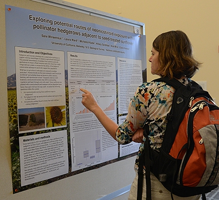 A Bee Symposium participant reads the UC Davis Berkeley poster that later was declared the first-place winner. (Photo by Kathy Keatley Garvey)