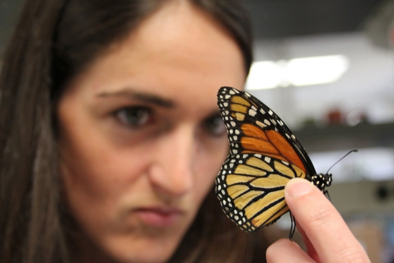 Christine Merlin with monarch. (Photo courtesy of Texas A&M University)