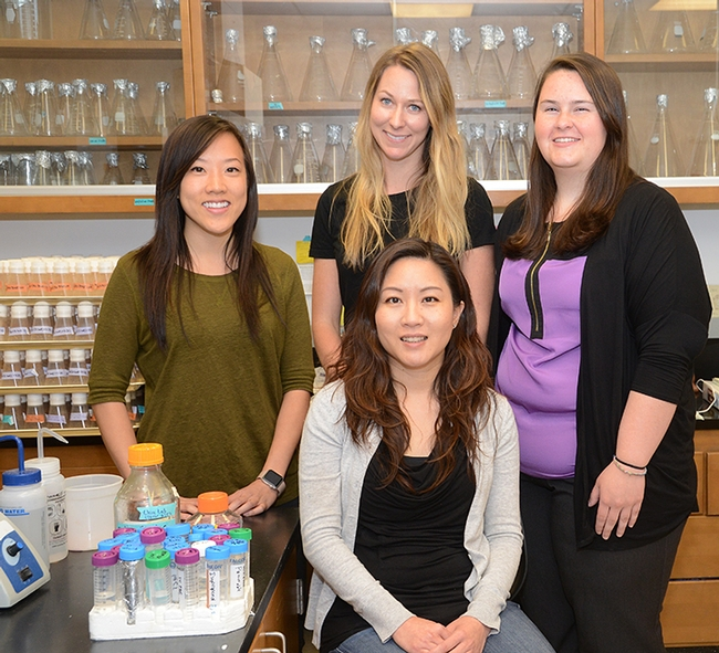 Molecular geneticist and mentor Joanna Chiu (front), assistant professor in the UC Davis Department of Entomology and Nematology and a co-administrator of the UC Davis Research Scholars Program in Insect Biology, is circled by (from left) Rosanna Kwok, Katherine Murphy and Jessica West, three outstanding scientists. (Photo by Kathy Keatley Garvey)