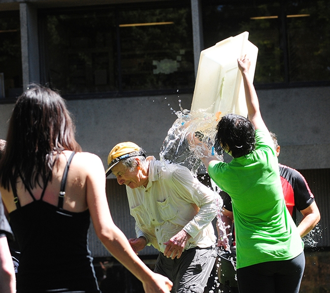 First in series of two:  Alifia Merchant of the Hammock lab  drenches Bruce Hammock. She just received her master's degree in agriculture and environmental chemistry. In the foreground is executive administrative assistant Louisa Lo. At right is Hammock lab researcher and balloon battle coordinator Christophe Morisseau. (Photos by Kathy Keatley Garvey)
