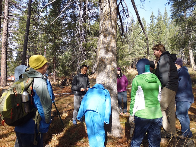 PhD student Jackson Audley (at right, wearing a black hoodie) gives an impromptu hands-on presentation about wood-boring beetles. (Photo by Sandy Olkowski)