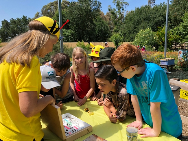 Wendy Mather, manager of the California Master Beekeeper Program, providing information on bees at the UC Davis Pollination Education Program at the Häagen-Dazs Honey Bee Haven. (Photo by Kathy Keatley Garvey)