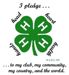 4-H logo
