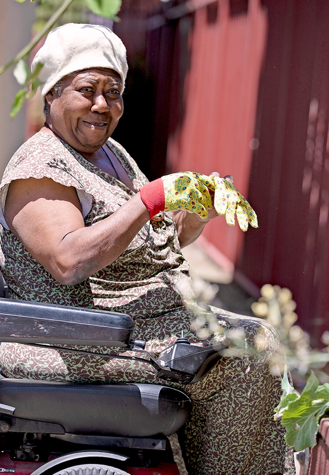 A woman outdoors in a wheelchair pulls on her gardening gloves.