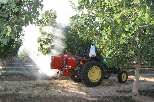 Photo shows a person covered in white protective gear driving a tractor with a sprayer.