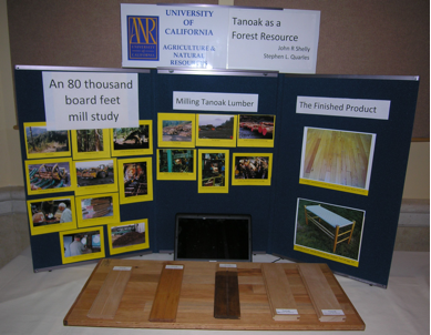 Tanoak display with slideshow and wood samples