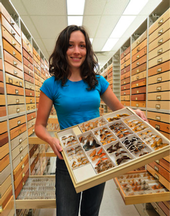 Grad student holding display of cataloged bugs