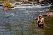 Jeff Thompson, California Trout's executive director, does a little fly fishing on the McCloud River. He played a crucial role in establishing the organization's partnership with UC Davis to ensure that research, teaching, and outreach on wild trout, salmon, and steelhead will continue for many years.