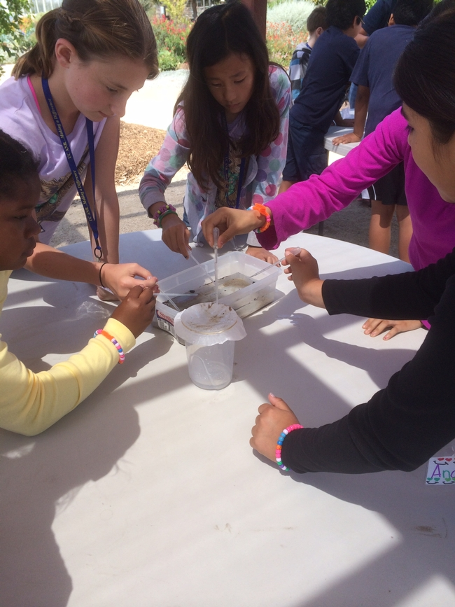 Activity teaches how filtration systems help clean our water.