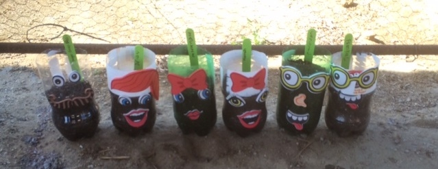 4H All Star Sustainable You! Training--recycled 2 liter bottle make whimsical and sustainable vegetable planters