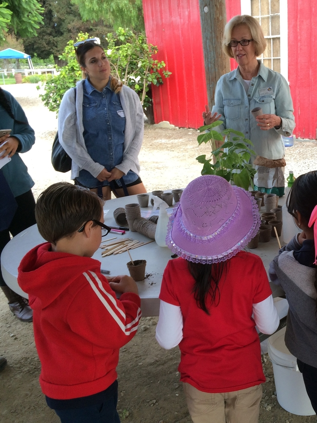 Planting seeds with MG Lynne Carey