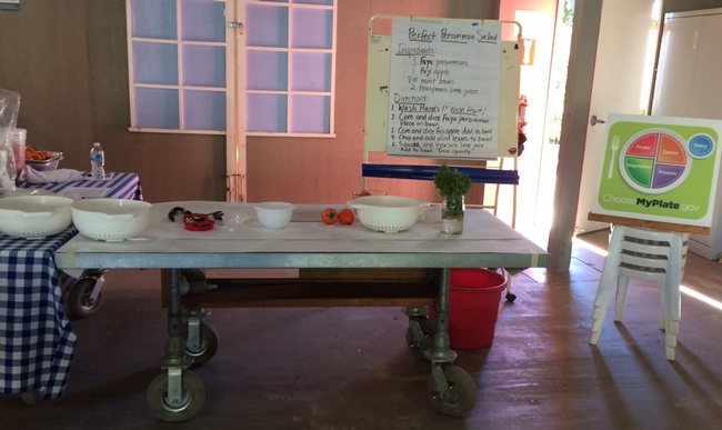 Nutrition and Cooking station