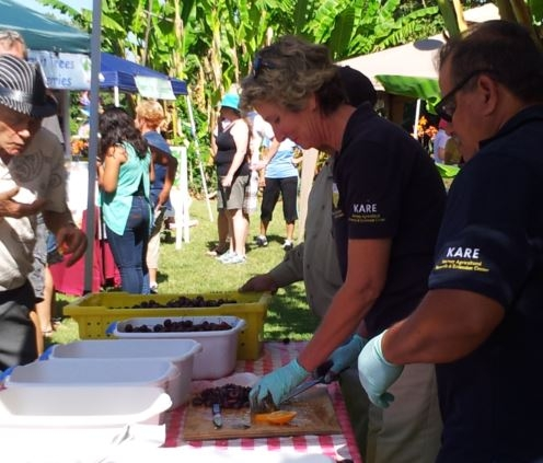 Julie Sievert and Rodolfo Cisneros providing the public with fresh produce to sample.
