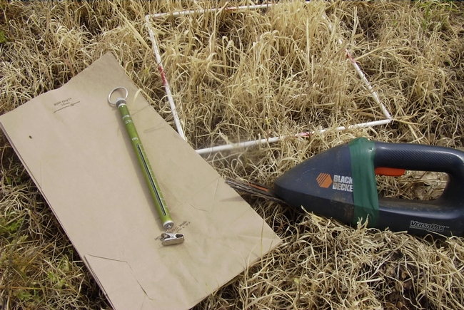 Tools used to clip and measure forage production