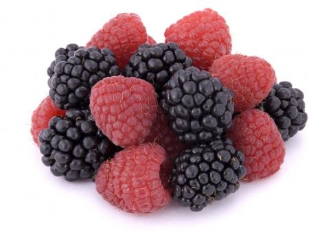Raspberries and blackberries--there are thornless varieties (CFAES-The Ohio State University)