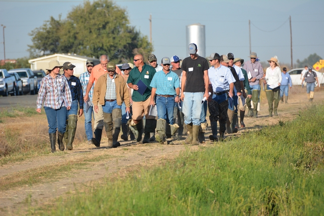 Participants head to the field to view plots (2016). Photo by Dana Dickey