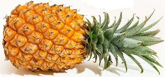 delicious ripe pineapple