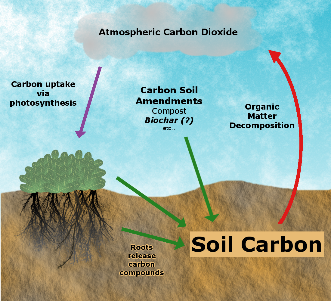Biochar and carbon sequestration solution center for for Soil organic carbon