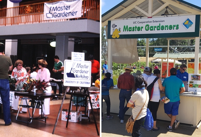 A UC Master Gardener booth located in the center of the mall, with volunteers standing at a table ready to help customers. ON the right is a photo of an outdoor booth with volunteers helping a line of fair guests.