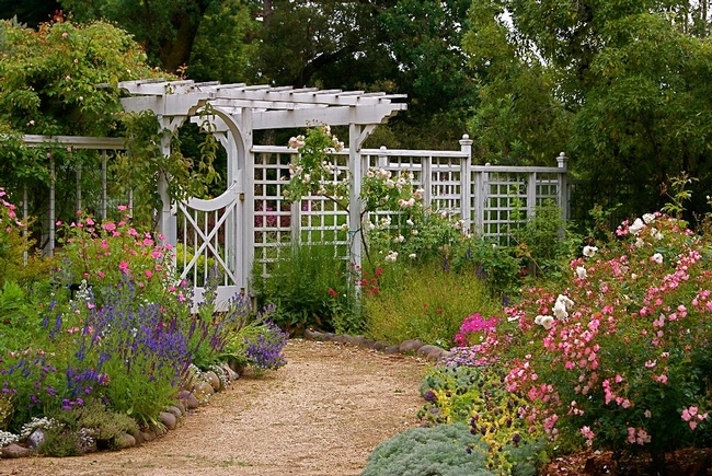 Habitat garden with white trellis and a variety of colorful plants.