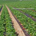 The New Issue of Cal Ag just came out and it's all about strawberries!