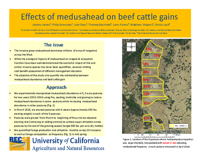 Effects of Medusahead on Beef Cattle Gains (page 1)