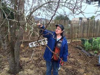 Emeritus Farm Advisor Deborah Giraud conducts a tree pruning class.