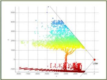 effect of canopy shape on productivity (Lidar)