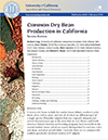 Common Dry Bean Production in California (PDF)