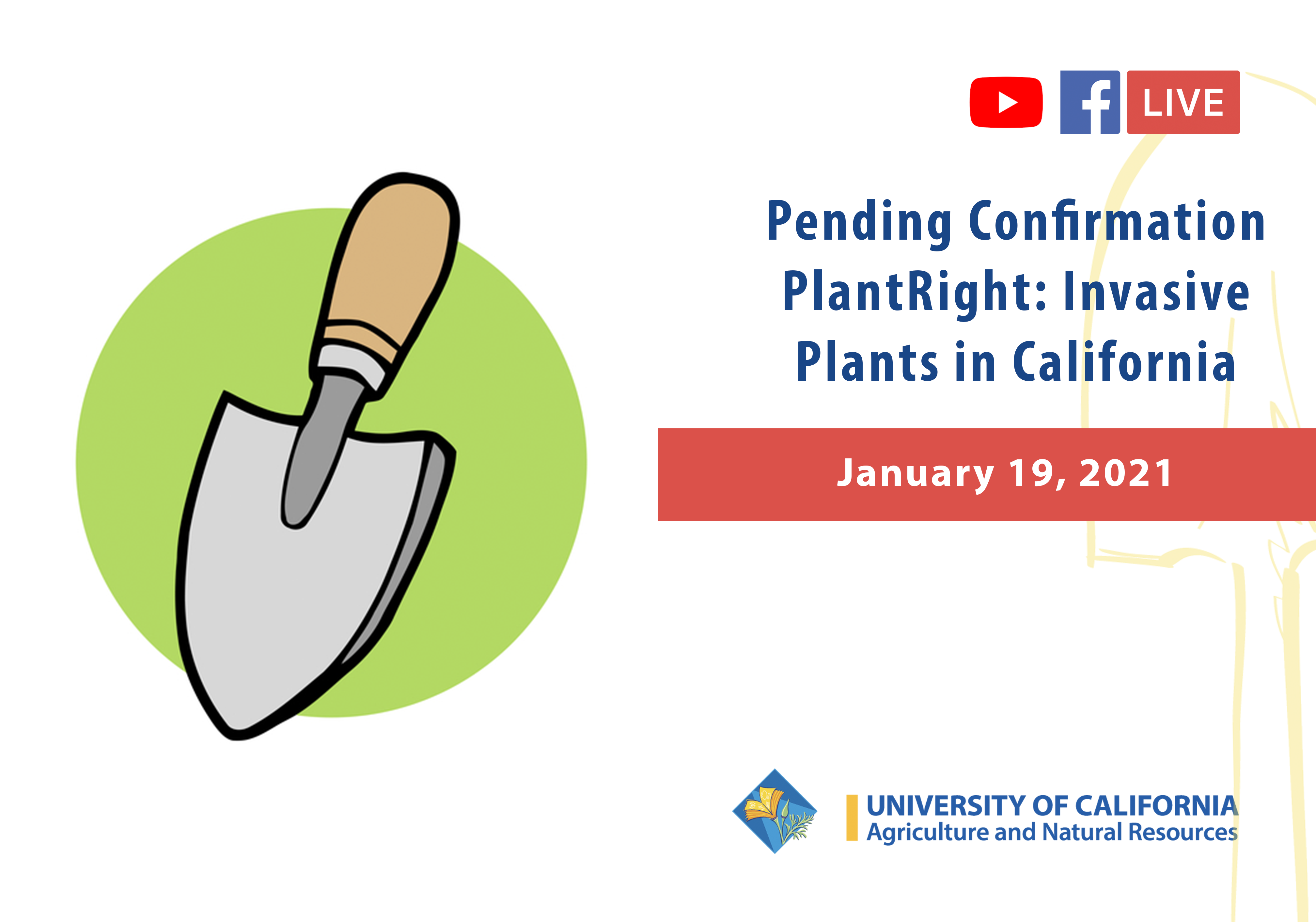 Pending Confirmation. PlantRight: Invasive Plants in California. 1/19/21