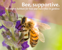 beeSupportive